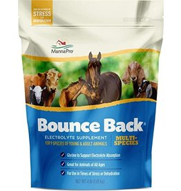 Bounce Back Multi Species Electrolyte Supplement 4lbs