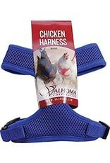 Chicken Harness, Pullet