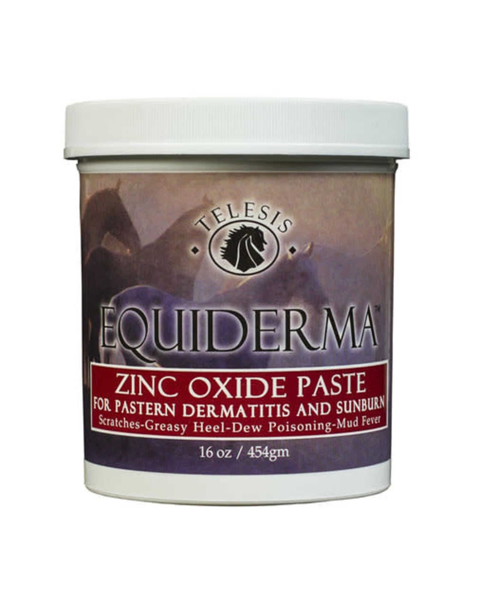 Equiderma Zinc Paste 16oz