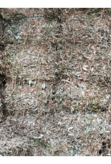 Perennial Peanut Hay