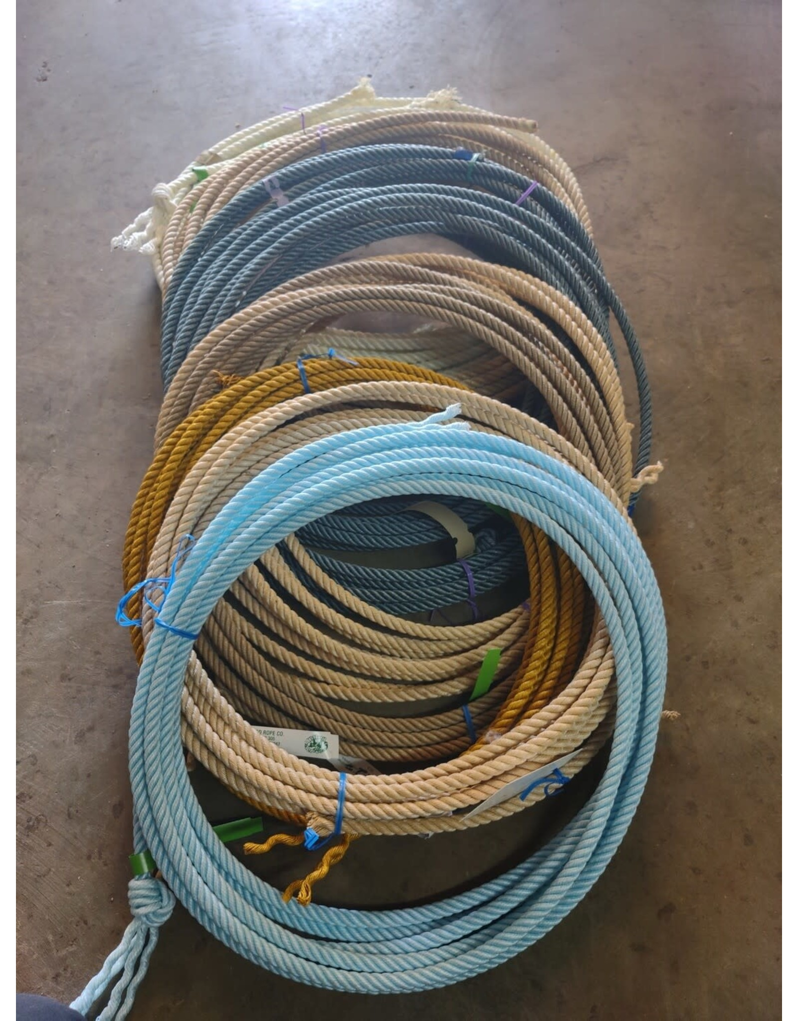 Willard Willard Short 2nd Calf Ropes