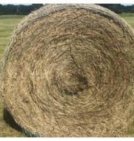 Floralta Hermathia Round Bale (Cow Hay)