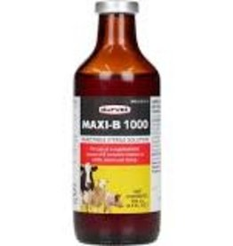 Maxi-B 1000 100ml