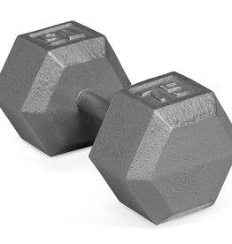 Cast Iron Hex Dumbbell - 75lb