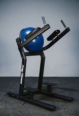 Leg Raise With Stability Balance Ball Black