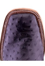 Anderson Bean Boot Company Anderson Bean Black FQ/Bone Ostrich Boot