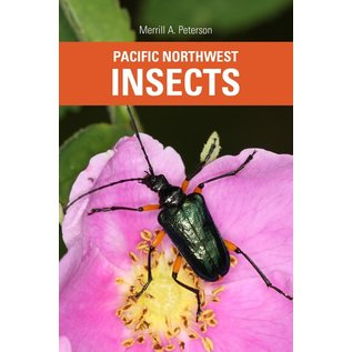 PACIFIC NW INSECTS