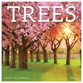 2020 TF Publishing Trees Calendar