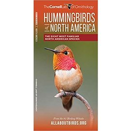 HUMMINGBIRDS of NA - Cornell Pocket Guide