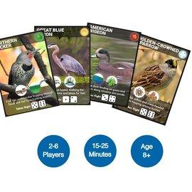 Backyard Birding: The Game