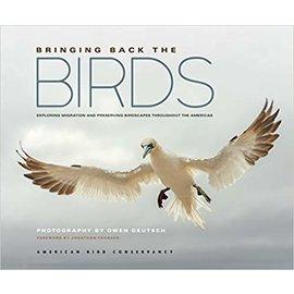 Bringing Back the Birds: Exploring Migration & Preserving Birdscapes