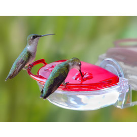 ASPECTS GEM HUMMINGBIRD FEEDER Window Feeder