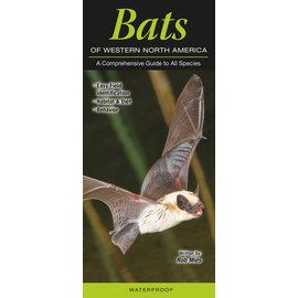 Bats of Western NA, Folding Guide