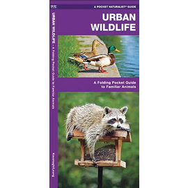 Urban Wildlife Pocket Guide