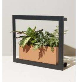 Modern Sprout MS- Smart Growframe- Matte Black