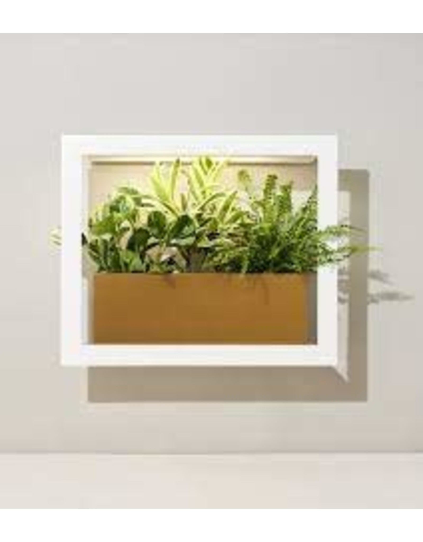Modern Sprout MODERN SPROUT - Smart Growframe-Matte White