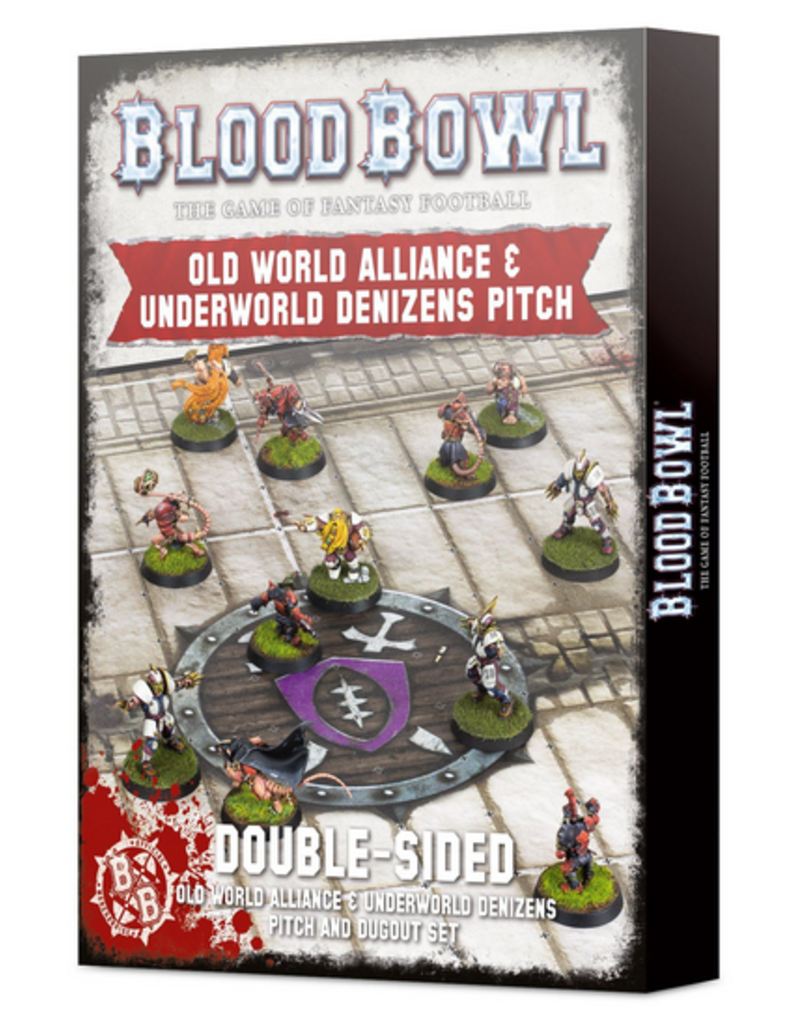 Warhammer Blood Bowl Team - Old World Alliance Pitch