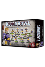 Warhammer Blood Bowl Team - The Elfheim Eagles