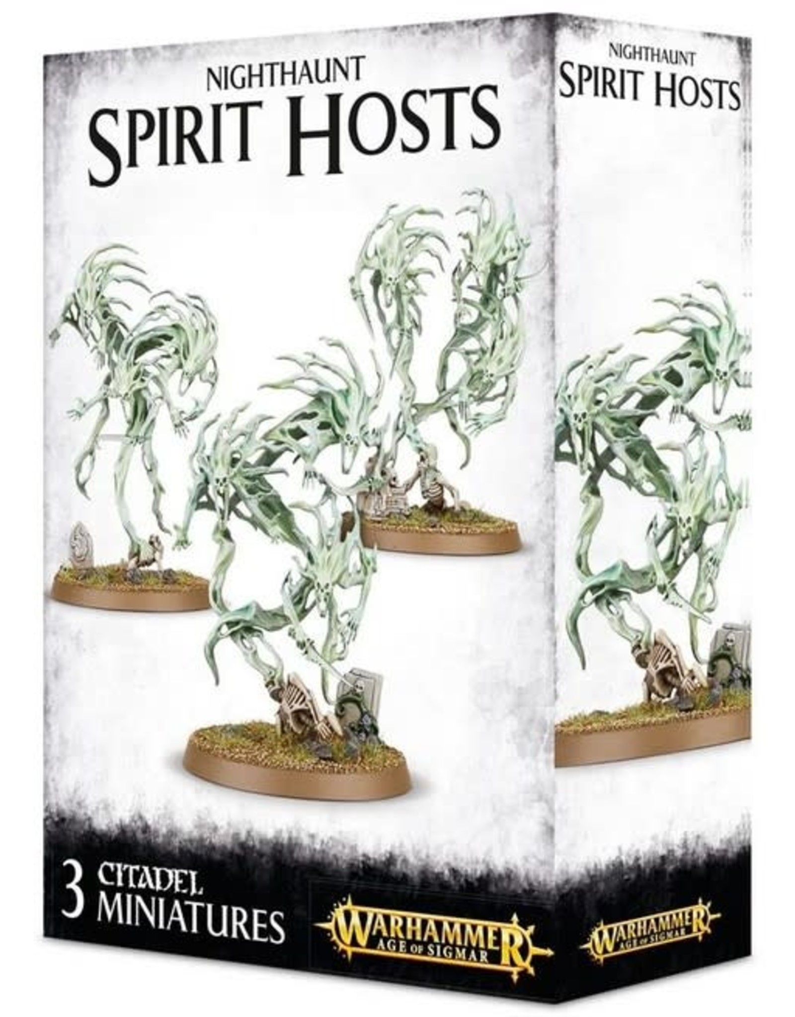 Warhammer AoS WHAoS Spirit Hosts