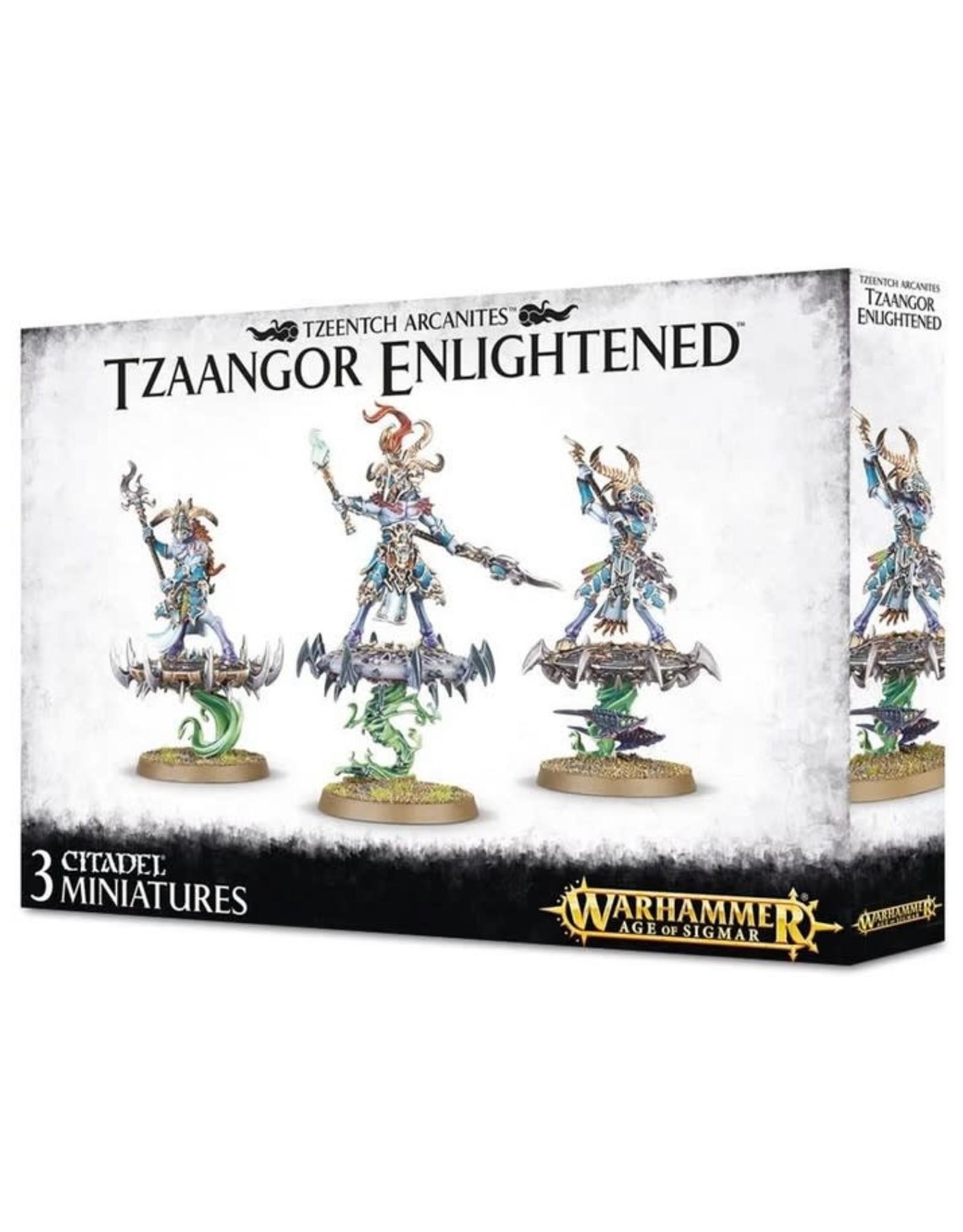 Warhammer 40K WHAoS Tzaangor Enlightened