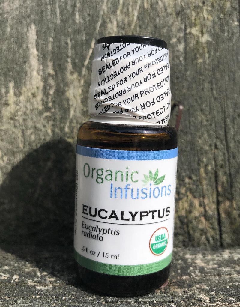 Organic Infusions Eucalyptus Radiata
