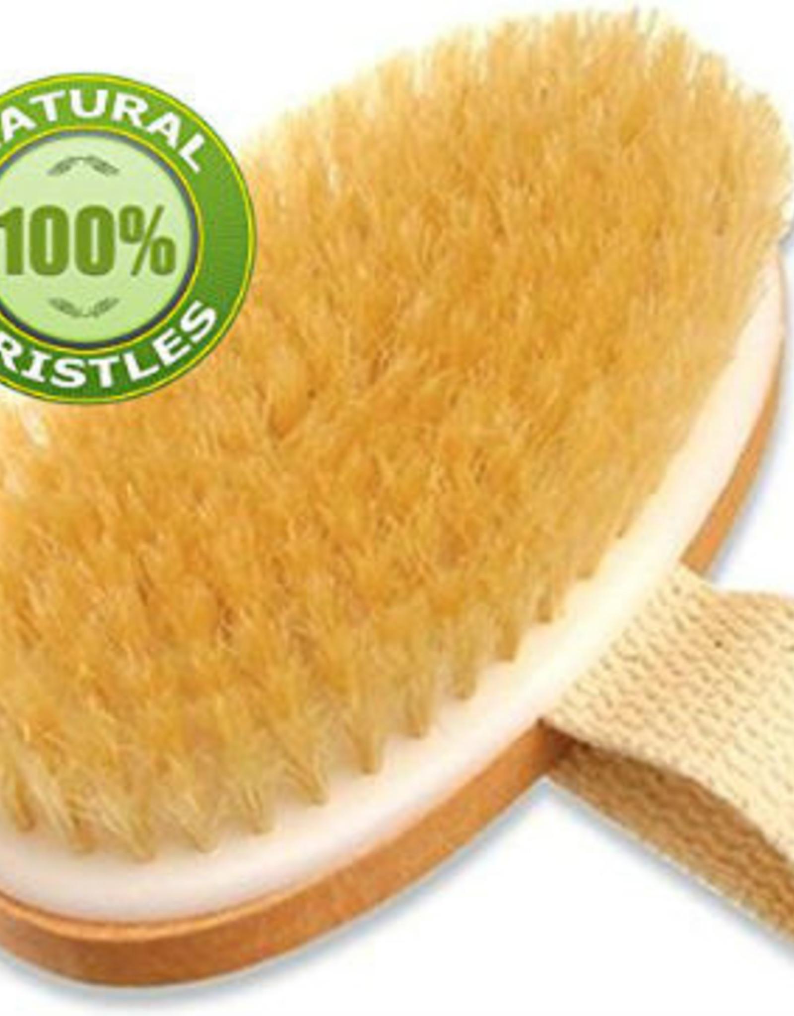 Sponges Direct Palm Held Body Brush