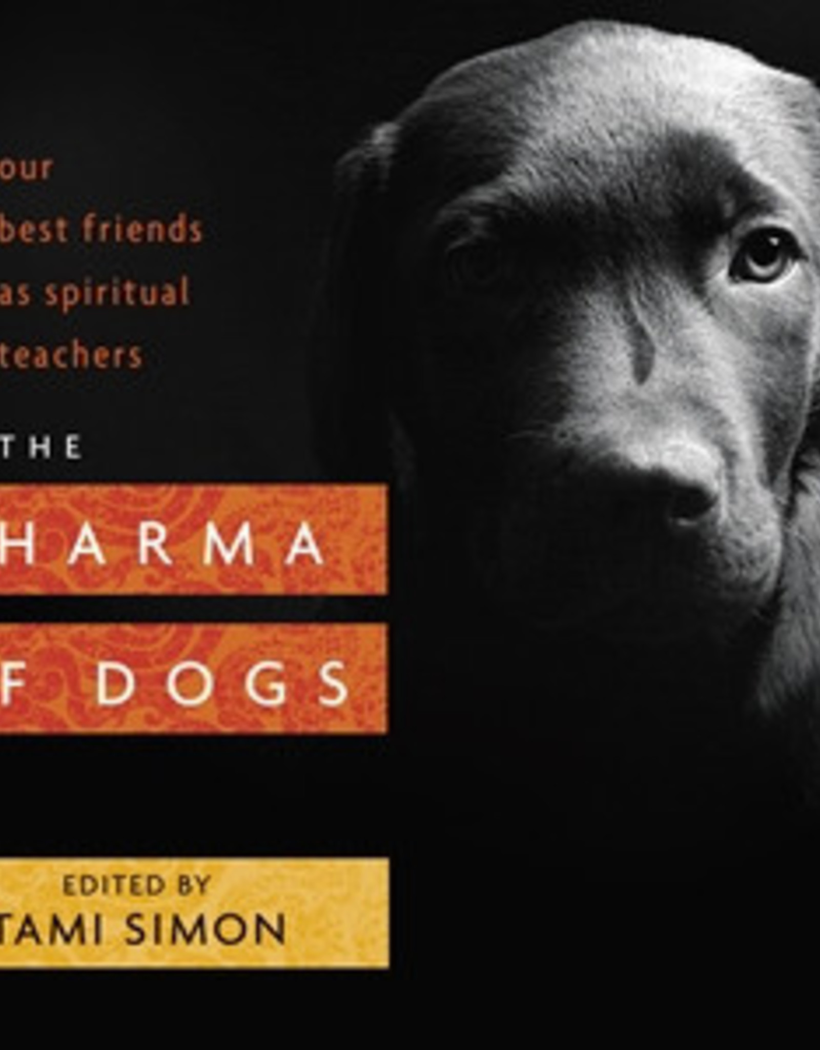 MacMillan The Dharma of Dogs (DC)