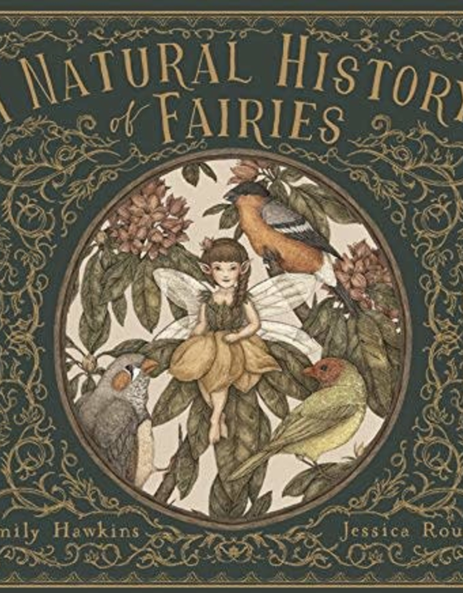 Hachette Book Group A Natural History of Fairies