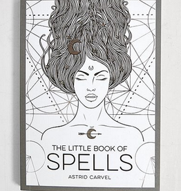 Hachette Book Group The Little Book Of Spells