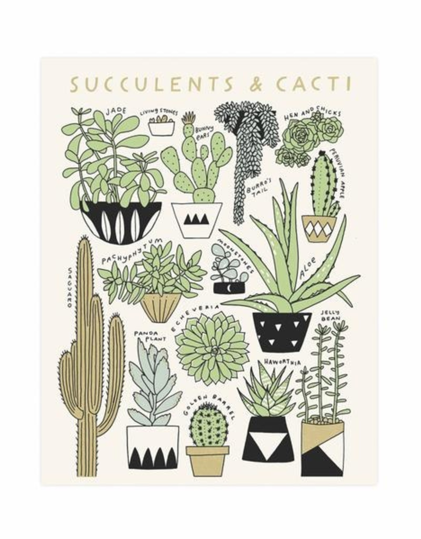 Worthwhile Paper Succulents Print