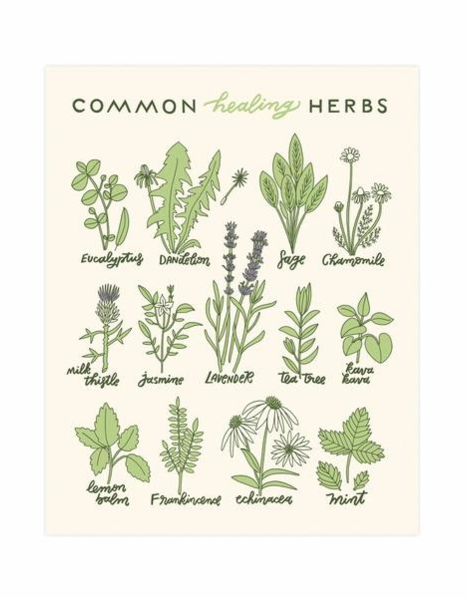 Worthwhile Paper Healing Herbs Print