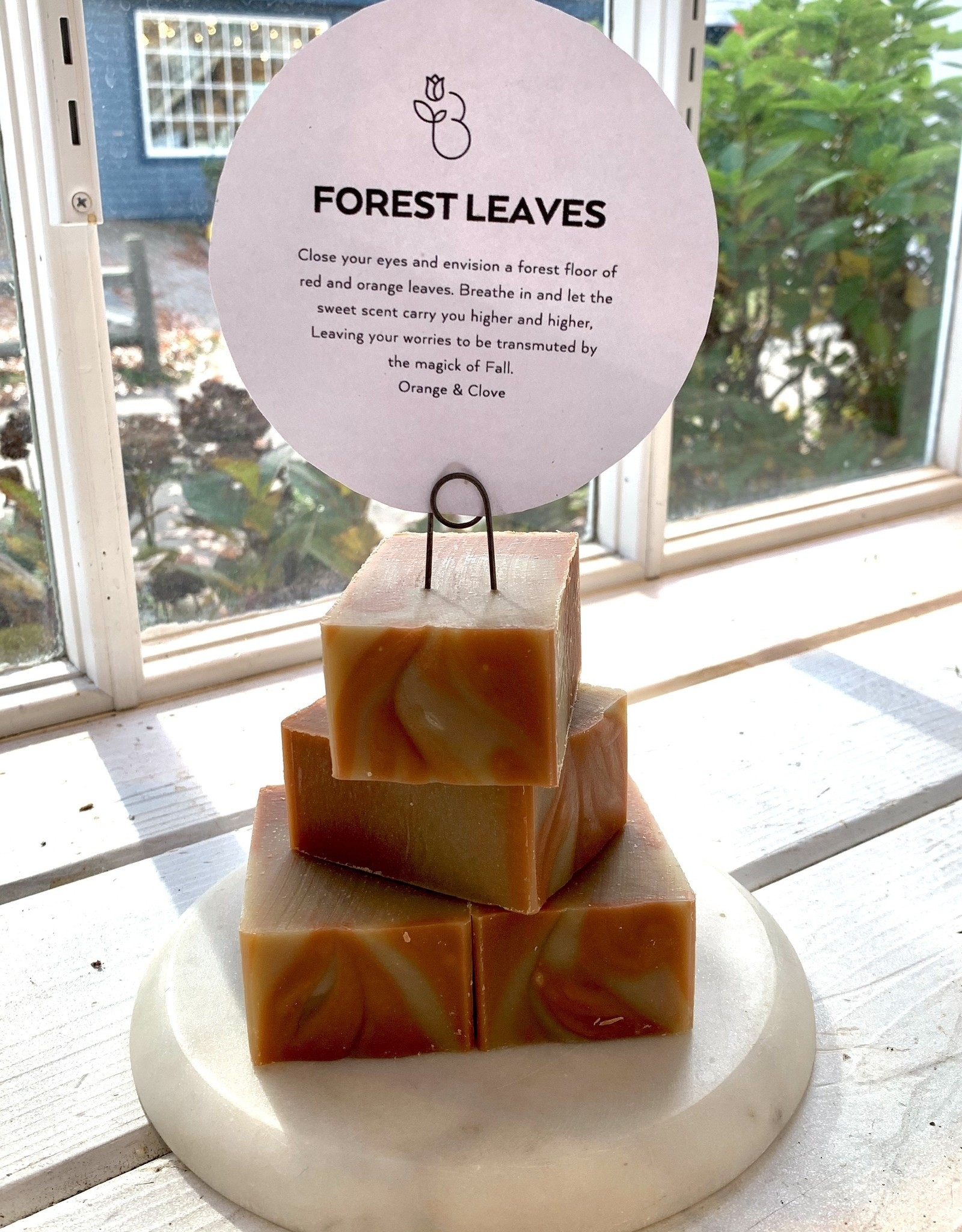 Becca Rose Goat Milk Soap: Forest Leaves (Orange and Clove)