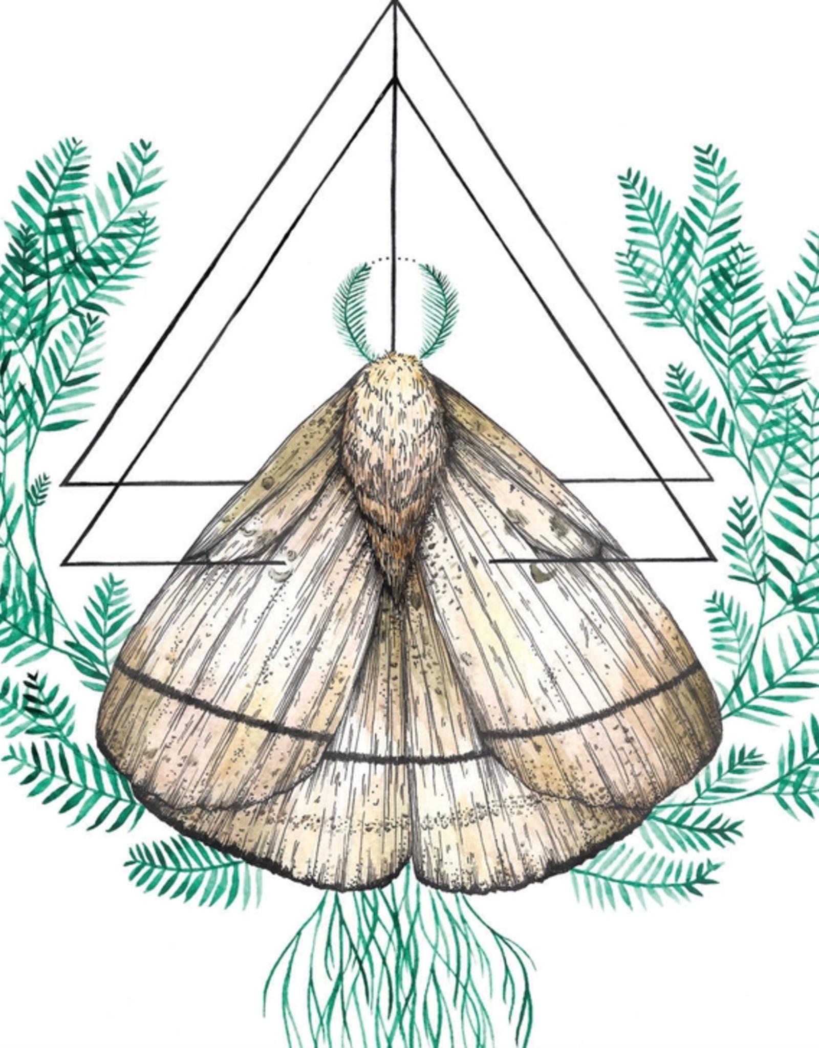 Marika Paz Illustration Oracle Moth Postcard