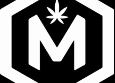 [M]ology