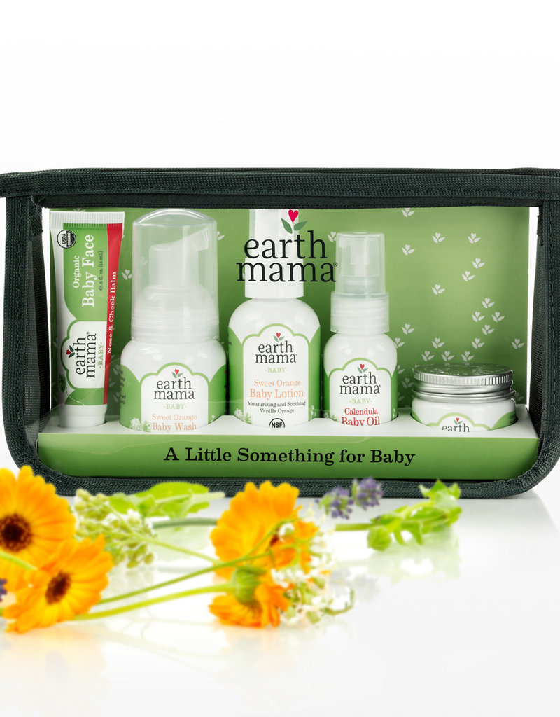 Earth Mama Organics A Little Something for Baby - Earth Mama
