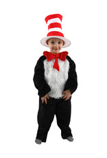 The Cat in the Hat Deluxe Costume - Boys