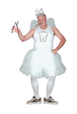 Tooth Fairy Costume - Humor