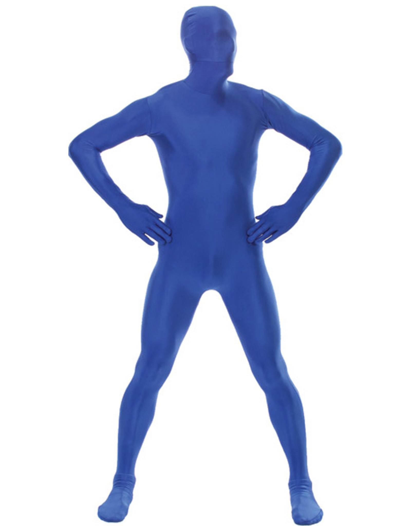 Blue Morphsuit Costume - Men's