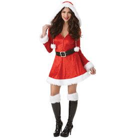 Sassy Santa Costume - Women's