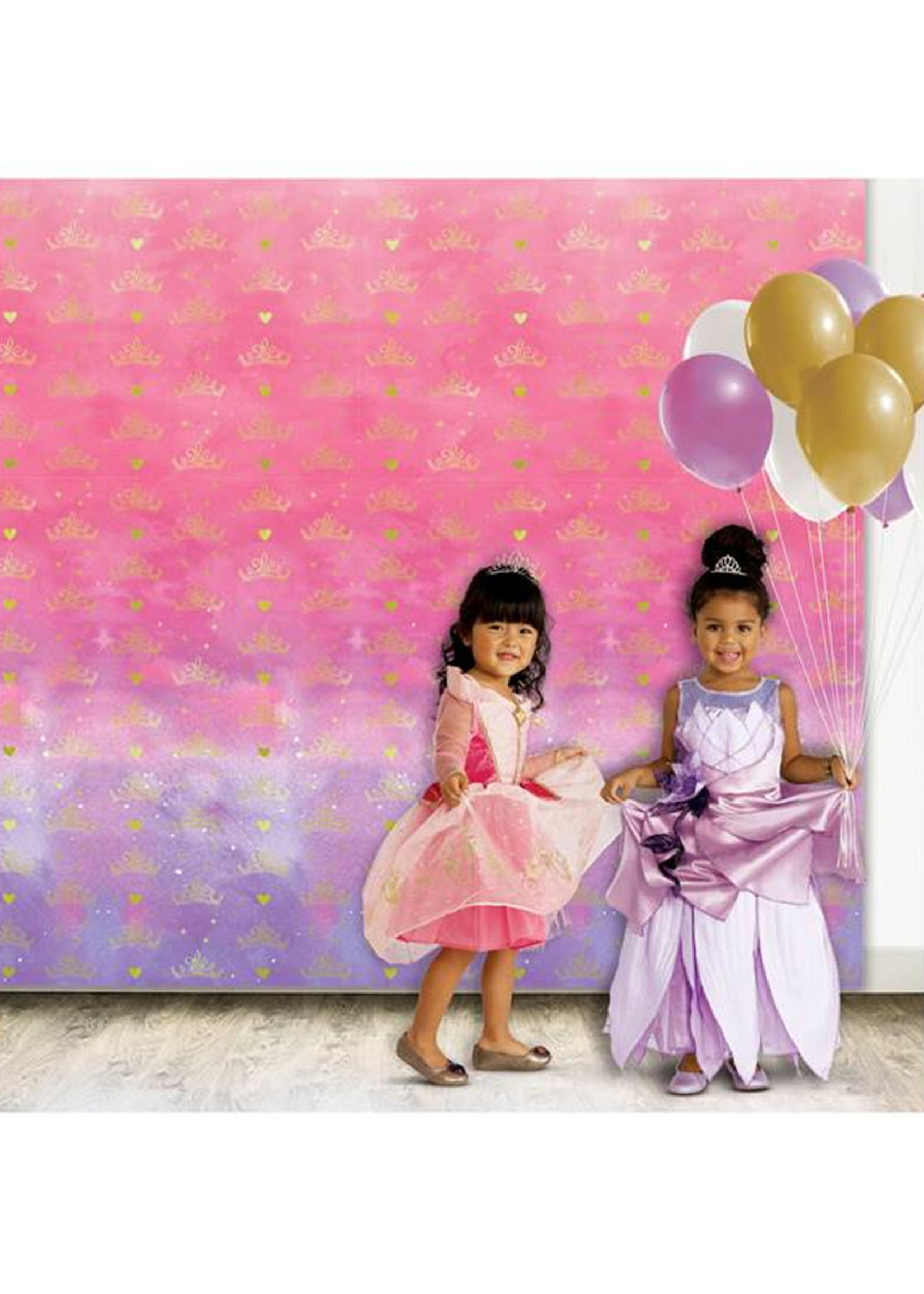 Disney Princess Once Upon A Time Photo Backdrop