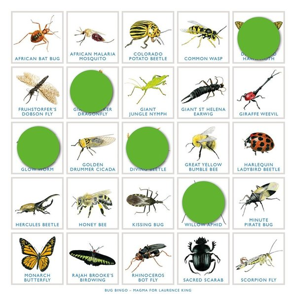 Chronicle Books Game | Bug Bingo