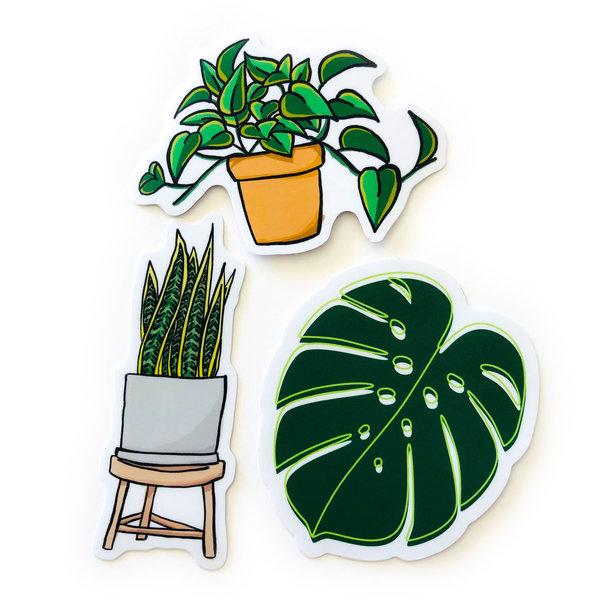 Stickers Northwest Sticker | Plant Pothos 2.0