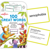Flash Cards   100 Great Words
