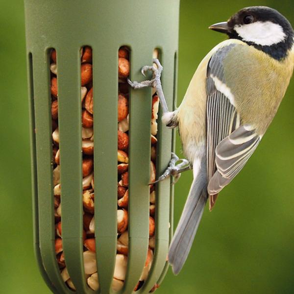 BIDK Home Bird Feeder | Max Green