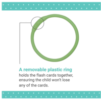 Chronicle Books Flashcards | Ring | Spanish To English