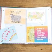 Chronicle Books Album Book | Card Keeper