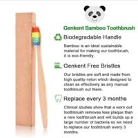 DHgate Toothbrush | Bamboo | Rainbow Bristles