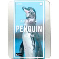 Kit   Adopt A Animal