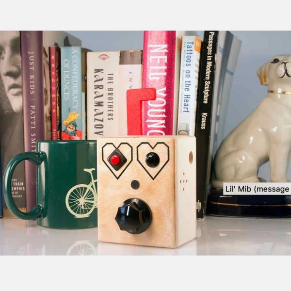 Brandnewnoise Voice Recorder | Loopy Lou
