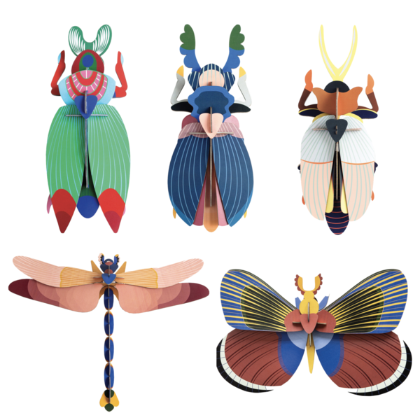 Studio Roof 3D Insect | Large